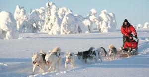 wintervakantie scandinavie