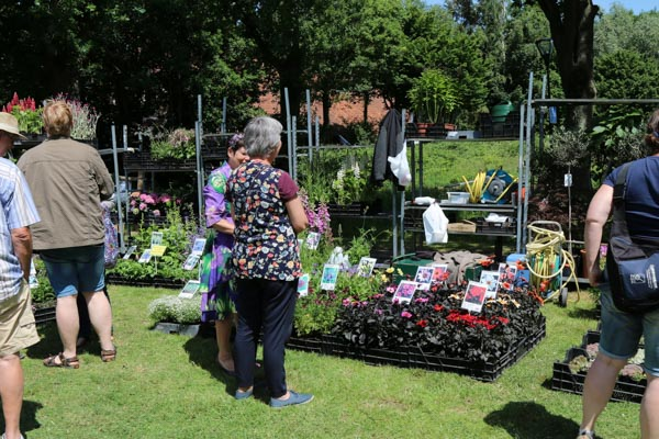 tuinplanten westerwolde fair